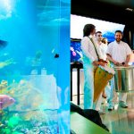 A Spectacular Gala Supporting Aquatic Conservation
