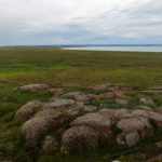 Arctic Connections: Why We're Venturing North