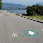 Calling All Waddlers–Join Us Along the Seawall!