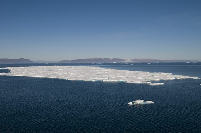 A patch of sea ice during summer in the Arctic in previous years.