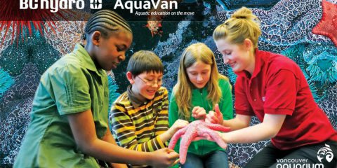 Vancouver Aquarium AquaVan Program