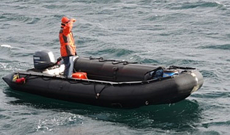 Riding Zodiacs to Heightened Awareness – Ocean Wise's AquaBlog
