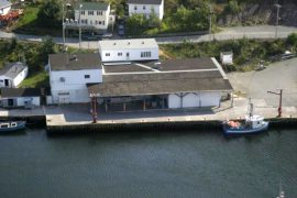 The Petty Harbour Mini Aquarium building used to be a fishermen's co-op fish plant.