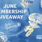 Family Membership Giveaway Every Day in June