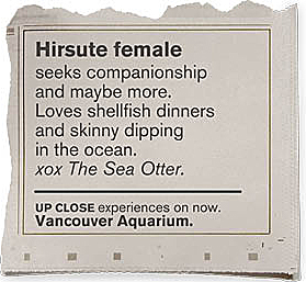 Personalads Otter__cropped