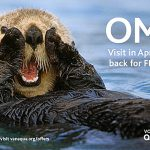 This is No April Fool's Joke: Two Visits for One Price