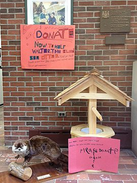 "A wishing well for Wally, complete with a ""Donate"" plea and a replica doll of a sea otter. Photo credit: W. Ross Macdonald School."