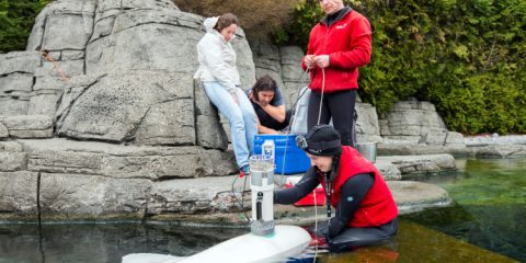 Vancouver Aquarium Cetacean Research