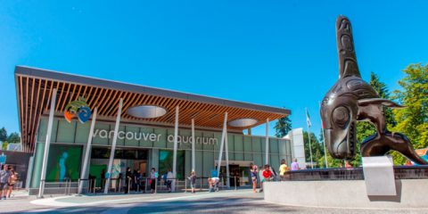 Vancouver Board of Trade Supports Vancouver Aquarium