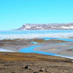 Field Notes from Arctic Watch: Week 1