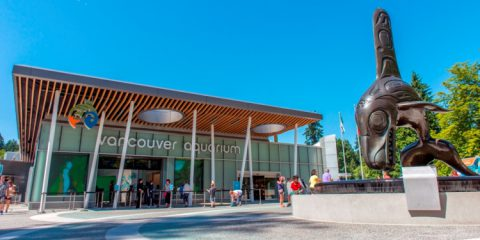 Vancouver Aquarium, top aquarium in North America