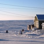 A Café Scientifique on Life in a Changing Arctic