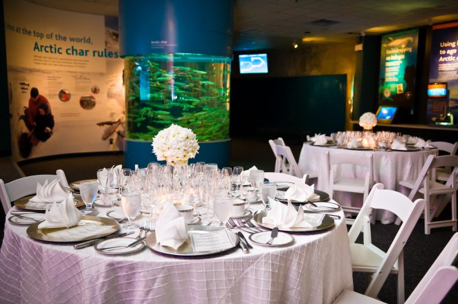Holiday parties at the Vancouver Aquarium