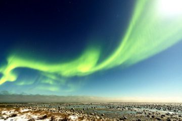 Northern lights shine in the night sky.