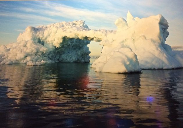 Frozen photo exhibit at Vancouver Aquarium