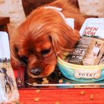 Ocean Wise™ Welcomes Sustainable Pet Food Option