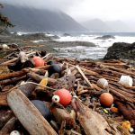 Haida Gwaii Awash With Marine Debris