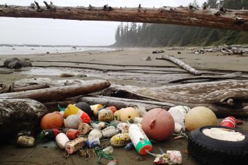 Cleaning up Marine Debris from Remote Beaches