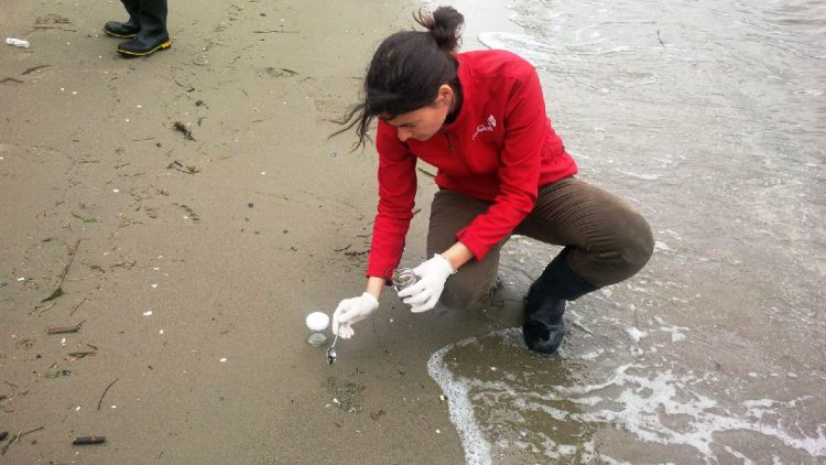 Dr. Carmen Morales collects samples for analysis.