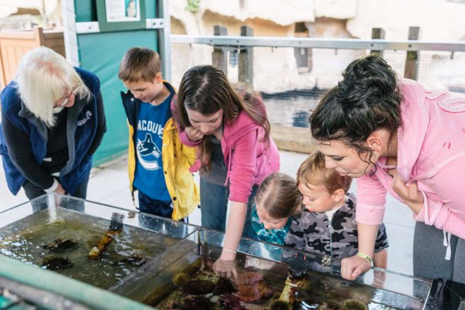 Kids get hands on with marine life during Dreamnight. Photo Credit: Brett Vo