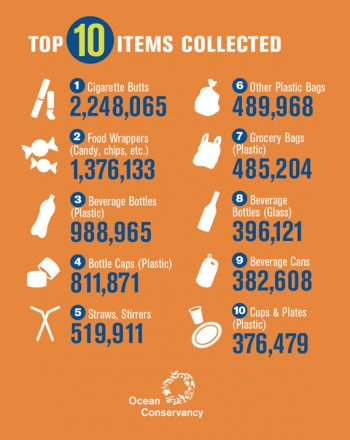 Top 10 Items Collected as Shoreline Litter