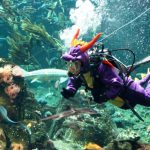 From Diving Researcher to Sea Monster