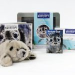 Adopt a Harbour Seal and Support Marine Mammal Rescue