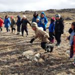 Shoreline Cleanups in Canada's Arctic