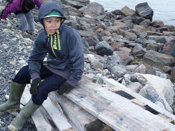 Great Canadian Shoreline Cleanup Arctic