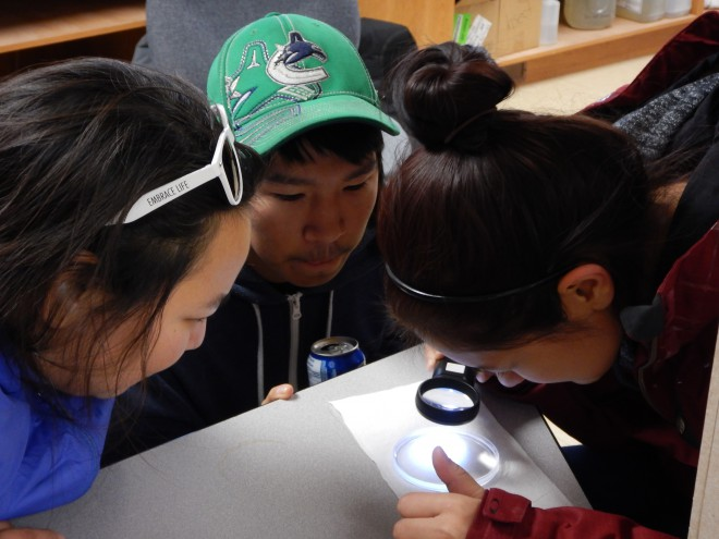 Jennifer Ullulaq, Jamie Ihakkaq and Jasmine Tiktalek examine plankton collected on the Cambridge Bay shoreline.
