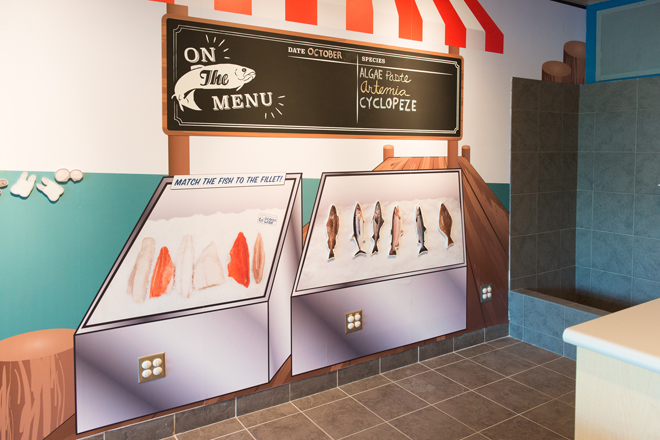 Interactive murals allow students to see how marine life is part of our food system.