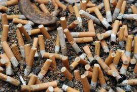 Cigarette butts are the most common litter item found on shoreline cleanups.