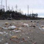 Talking Plastic PollutionFrom Coast to Coast