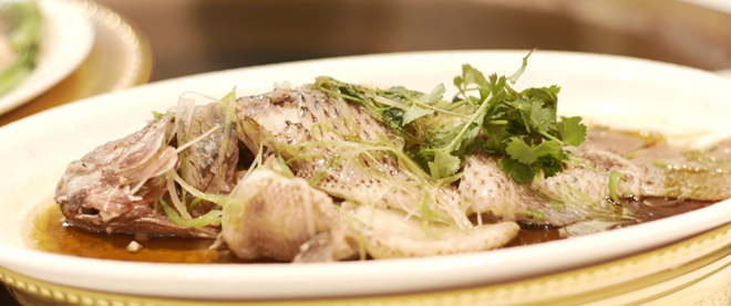 Steamed tilapia with ginger scallion sauce makes a great dish to unite family and friends.