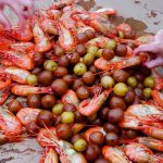 Shrimp Series Part Three: Spot Prawn Festival