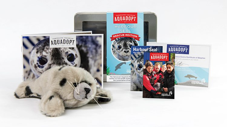 By purchasing the new seal Aquadopt kit, you will be supporting the care of seals at the Vancouver Aquarium.