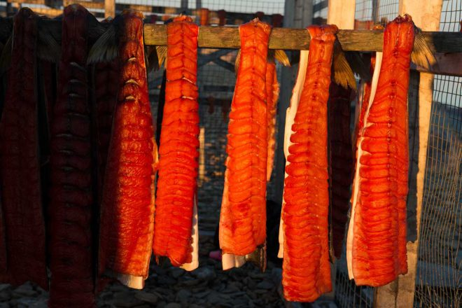 Hang drying Arctic char in Cambridge Bay.