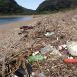 Five Things I Learned in Japan About Shoreline Litter
