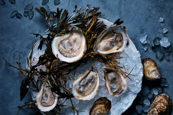 16_12_21_oysters_holtscafe_select_v2_rgb