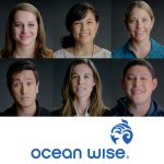 Ocean Wise® Launches as a Global Ocean Conservation Organization