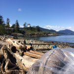 Welcoming Another Clean Shoreline Community