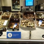 Sustainable Seafood Arrives Coast-to-Coast in Canada