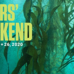 Vancouver Aquarium kicks off 2020 with divers' weekend